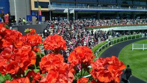 royal ascot new features