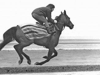 Red Rum Top 5 horses of all time