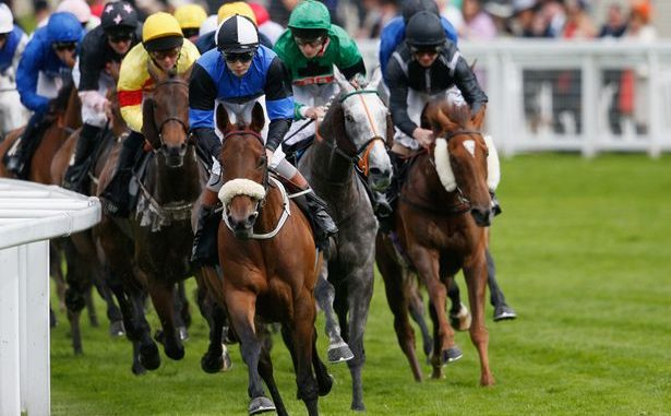 watch horse racing events